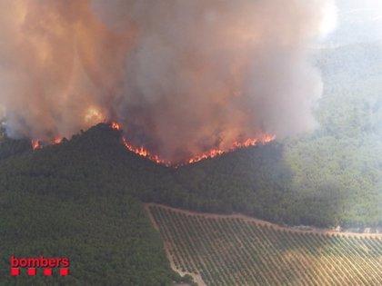 Arden seis fuegos en Girona, Tarragona y Lleida, uno aún activo