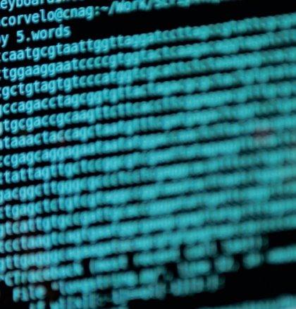 """Una investigación internacional identifica 4 millones de """"interruptores"""" en el genoma humano"""
