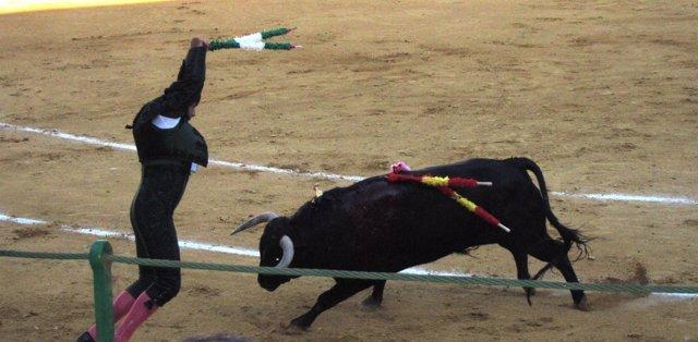 Banderillero En La Plaza De Toros De Valladolid