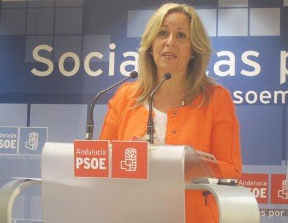 """El PSOE critica el """"desmantelamiento"""" de SNS con la implantación del copago en determinados servicios sanitarios"""