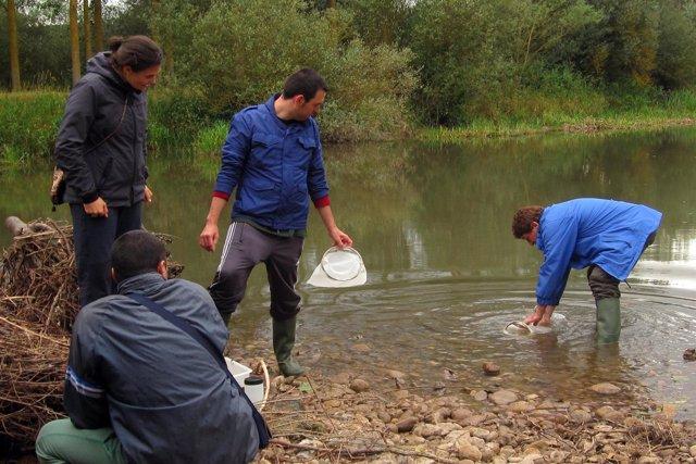 Voluntarios en el Río Ebro