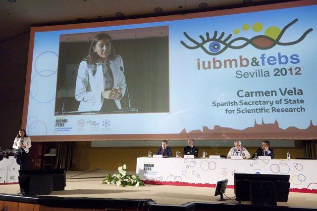Secretaria de Estado de Investigación, Desarrollo e Innovación, Carmen Vela