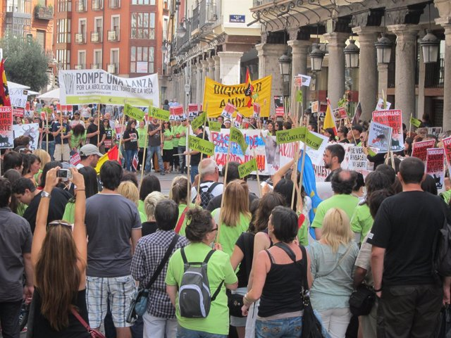 Manifestación En Valladolid De Pacma Contra El Toro De La Vega