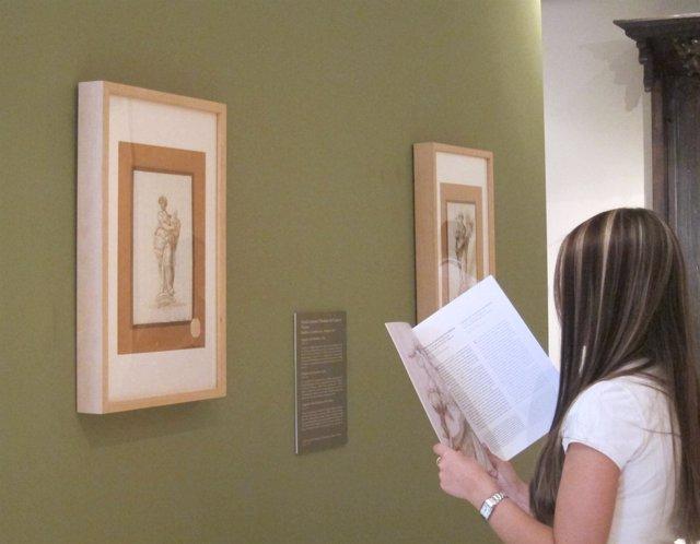 Una Joven Observa Los Dibujos De Palominio En El Museo San Pío V