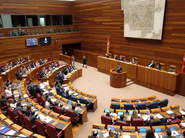 Pleno De Las Cortes De Castilla Y León.