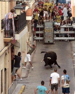 Festejo taurino de 'bous al carrer' en Puçol