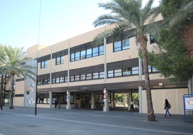 Campus De La Universidad Politécnica De Valencia (UPV)