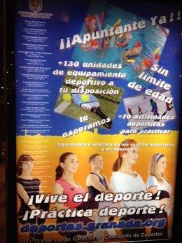 Cartel Concejalía de Deportes con faltas