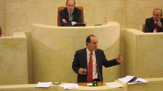 Ignacio Diego, Pleno Parlamento