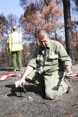 Trabajador del Infoca en una zona afectada por un incendio