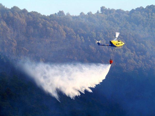 Un incendio forestal