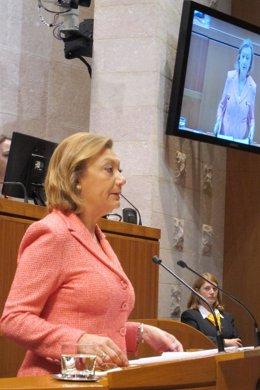 Luisa Fernanda Rudi durante su intervención