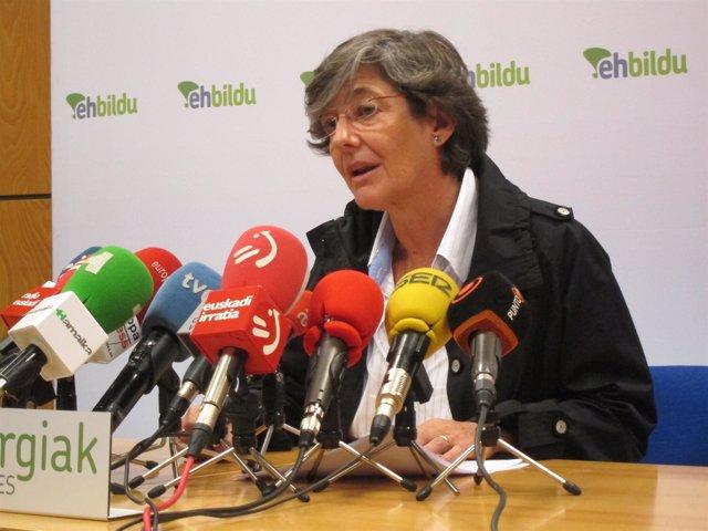 Laura Mintegi presenta las propuestas de fiscalidad