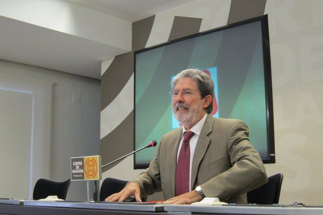 Adolfo Barrena, portavoz de IU