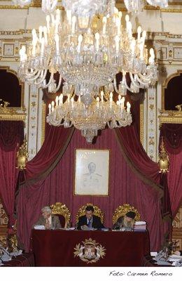 Salón De Plenos De Diputación