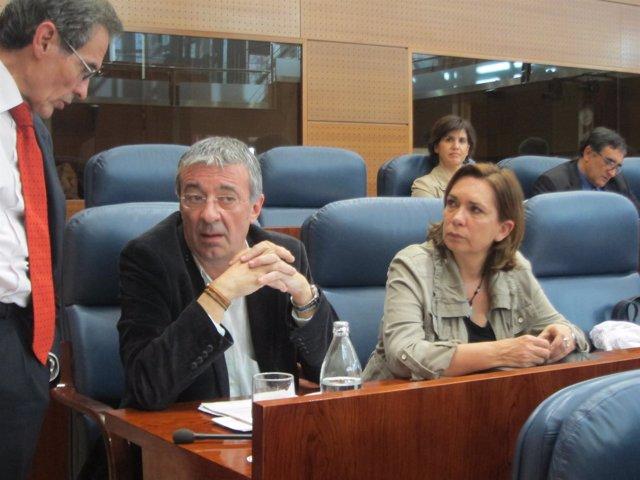 Bancada De IU En La Asamblea De Madrid