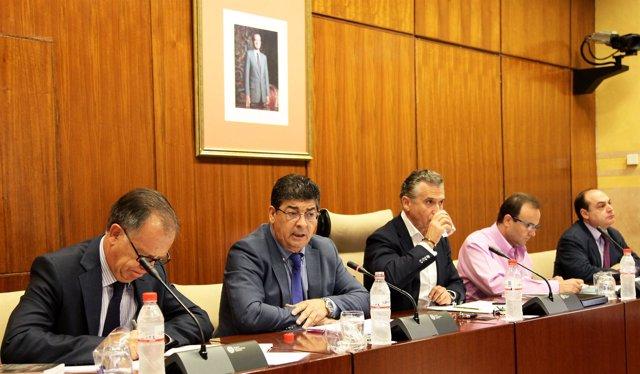 Valderas, en comisión parlamentaria
