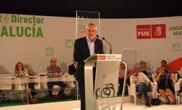 José Antonio Griñán en el Comité Director del PSOE-A