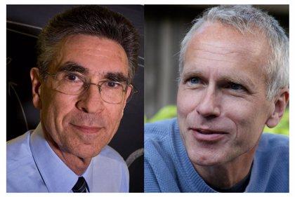 Los estadounidenses Robert J. Lefkowitz y Brian K. Kobilka ganan el Nobel de Química 2012