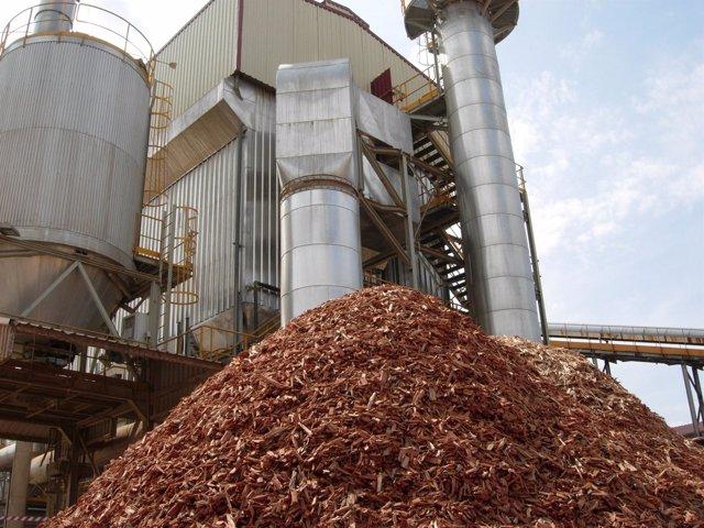 Andalucía lider el sector de la biomasa eléctrica