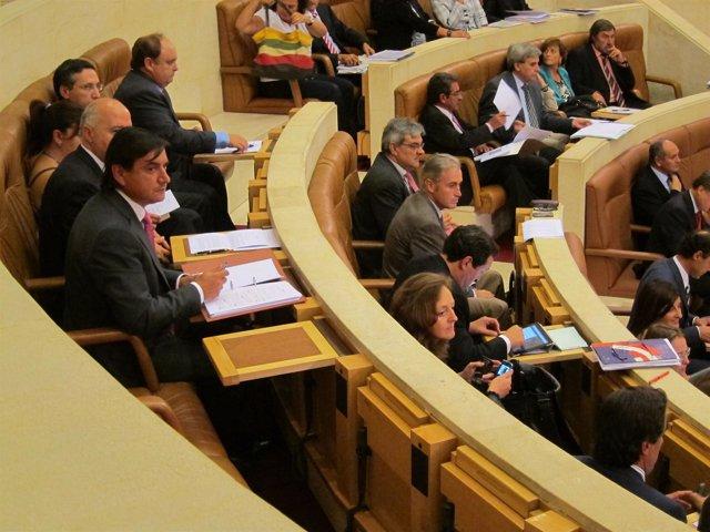 Pleno Del Parlamento Cántabro