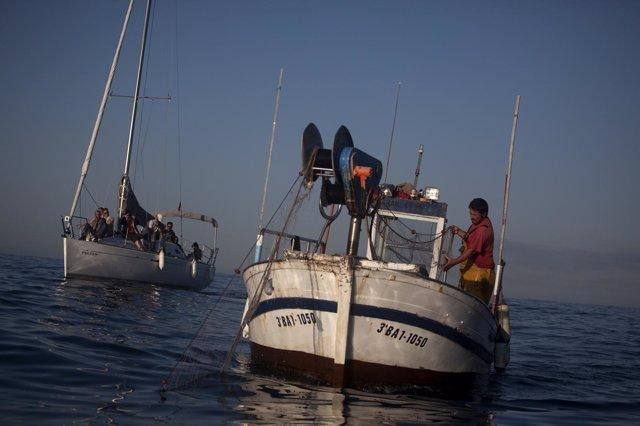 Pesca Artesanal. Barco, Embarcación, Pesquero.
