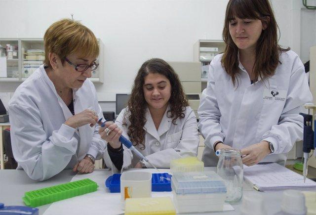 Esther Rebato., investigadora de la UPV-EHU