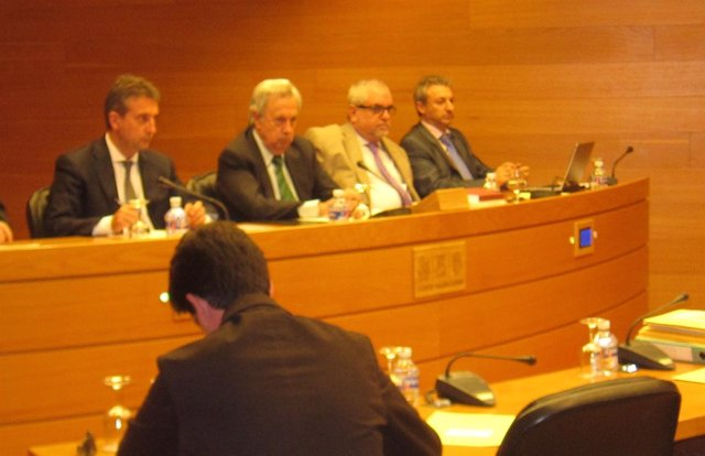 Pina, Primero Por La Izquierda, En La Comisión De La CAM En Las Corts