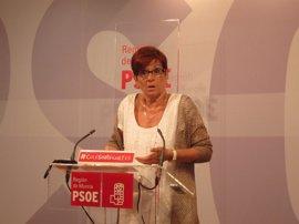 Retegui (PSRM) lamenta que prioridad Gobierno regional para 2013 sea reducir el déficit y no las personas ni el empleo