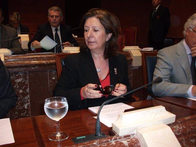 La consejera de Sanidad y Política Social, María Ángeles Palacios