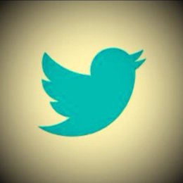 Logot Twitter con filtro