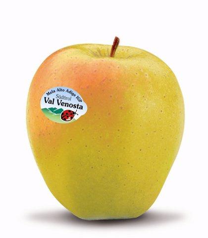 Los expertos recomiendan consumir frutas de temporada para ingerir las vitaminas y minerales necesarias en cada estación