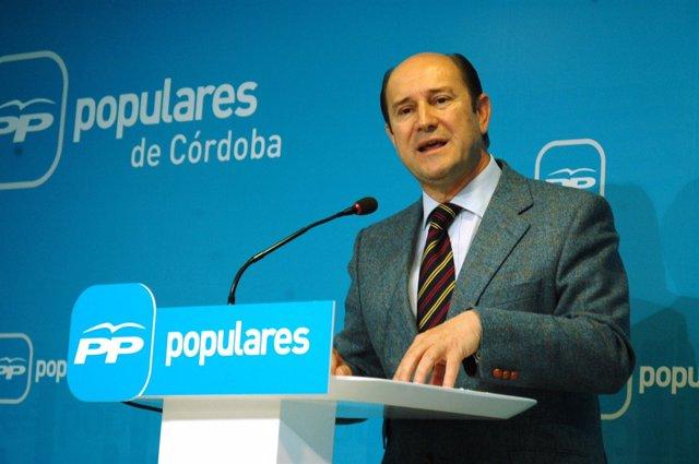 Cabello de Alba en rueda de prensa