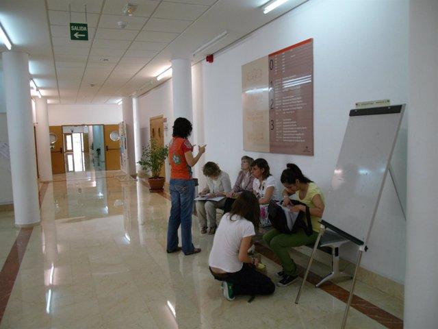 Universitarios, Alumnos, Universidad, Estudiantes