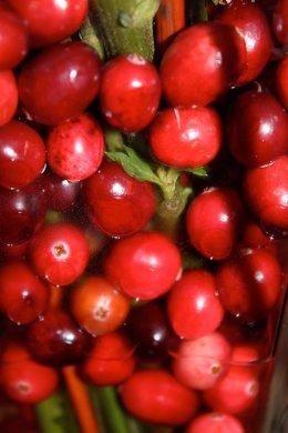 Imagen del fruto cranberry