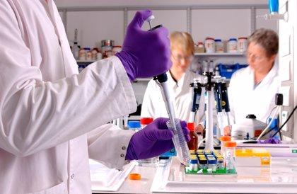 Investigadores descubren cómo el citomegalovirus manipula las células humanas durante la infección