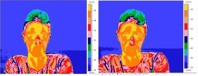 Una de las imágenes que los científicos han obtenido con el termógrafo