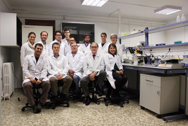 En la imagen, grupo de investigación de Ingeniería Tisular de Granada