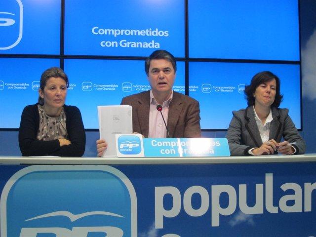Carlos Rojas en rueda de prensa en el PP de Granada