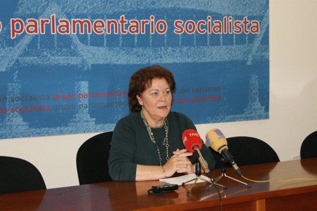 La diputada Teresa Rosique