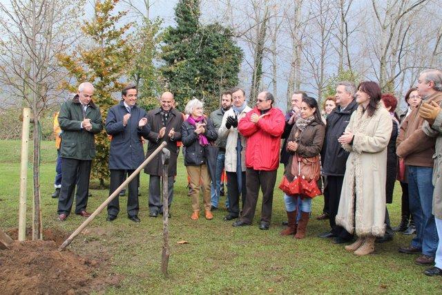 Bosque Solidaridad