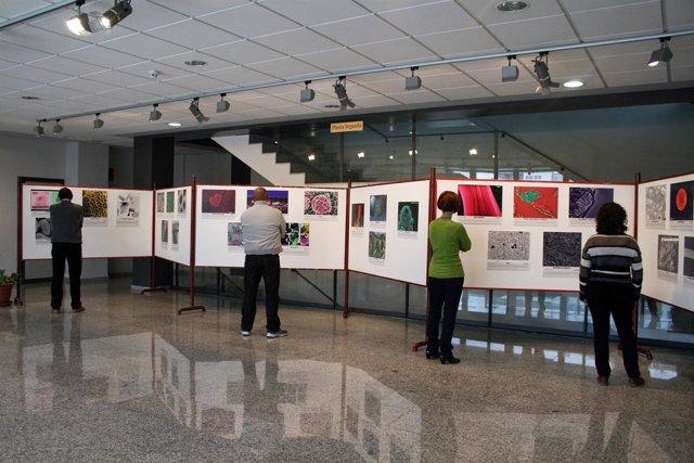 El Citius acoge una exposición con fotos del Concurso Fotografía Al-NanoPhoto