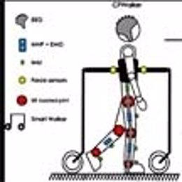 Rehabilitación robótica