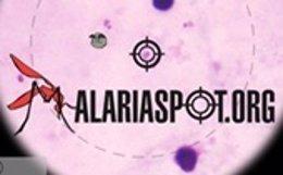 Imagen del juego 'on line' de la UPM para el recuento de parásitos de malaria