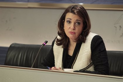 El PSOE avisa al Gobierno de que no tiene ni el respaldo legal, ni el democrático, para privatizar la sanidad pública