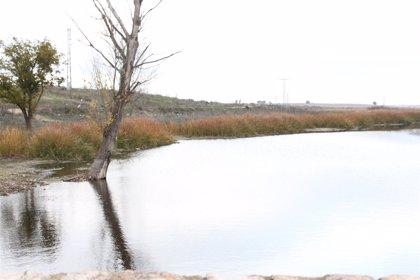 Unas 300 personas piden un plan de gestión para el Parque Nacional de Las Tablas de Daimiel
