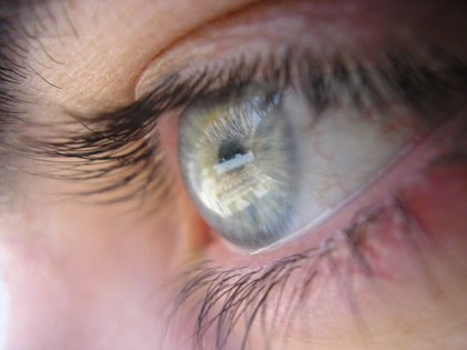 El parpadeo se efectúa para relajar la atención visual, además de para lubricar la córnea