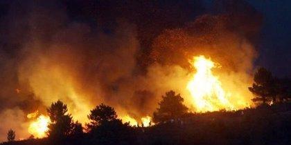 El ICO dejó sin usar en 2008 líneas para damnificados por catástrofes como los incendios de Guadalajara y Galicia