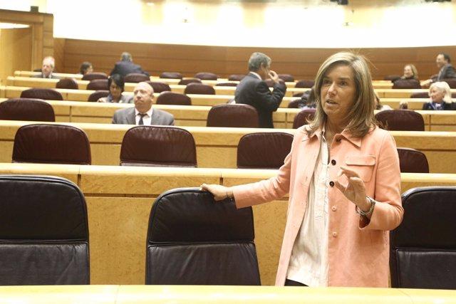 Ana Mato en el Senado el 6 de noviembre de 2012