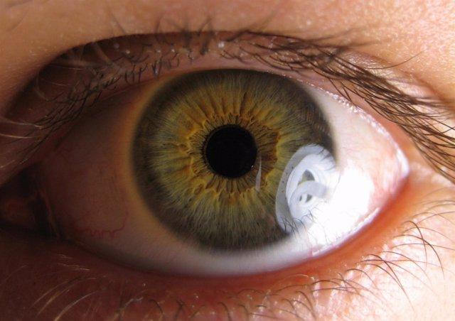 Ojo pupila